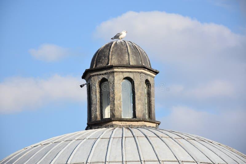 Äußere Ansicht der Haube in der Osmanearchitektur in der Türkei lizenzfreie stockfotos