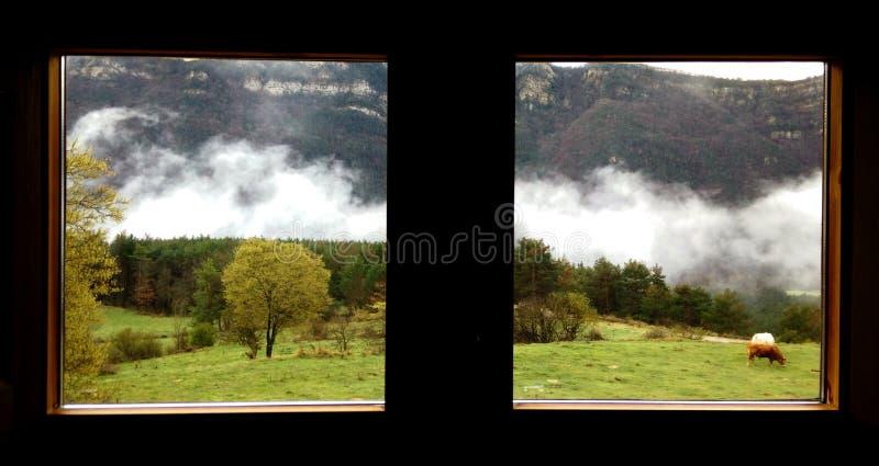 Äußere Ansicht von nebeligen Bergen und von zwei Kühen durch Fenster lizenzfreie stockfotografie