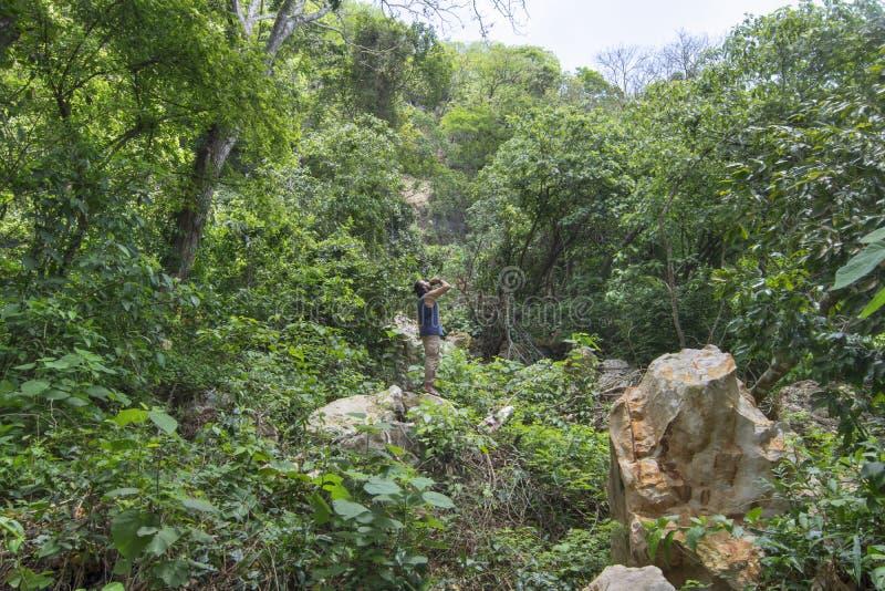 Äventyrligt fotvandraredricksvatten i tät tropisk skog royaltyfri fotografi