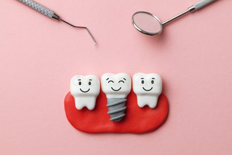 健康白色牙和植入管在桃红色背景和牙医工具镜子,勾子微笑着 库存图片