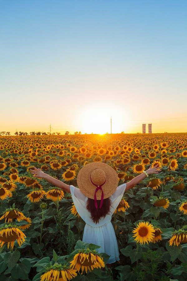 停留在向日葵的白色礼服的年轻欧洲女孩在信念姿势调遣  免版税库存照片