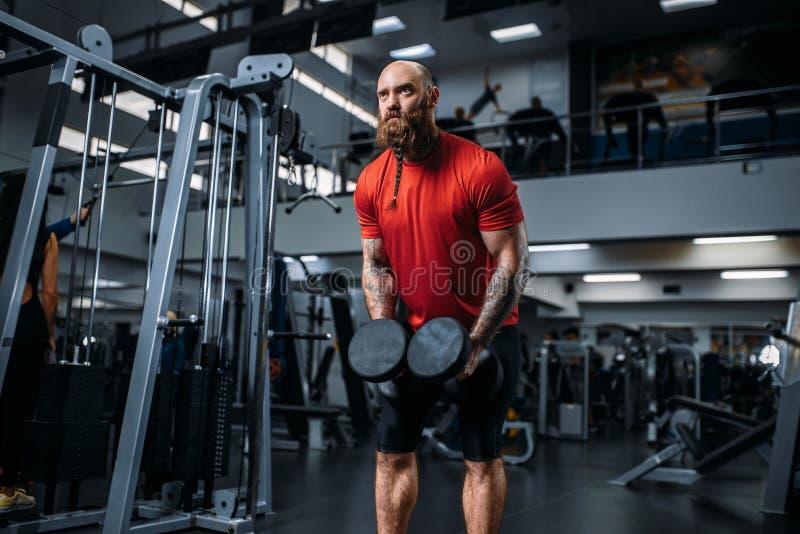 做与哑铃的举重运动员锻炼在健身房 免版税图库摄影
