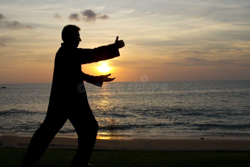 做taiji的人在日落在海滩 图库摄影