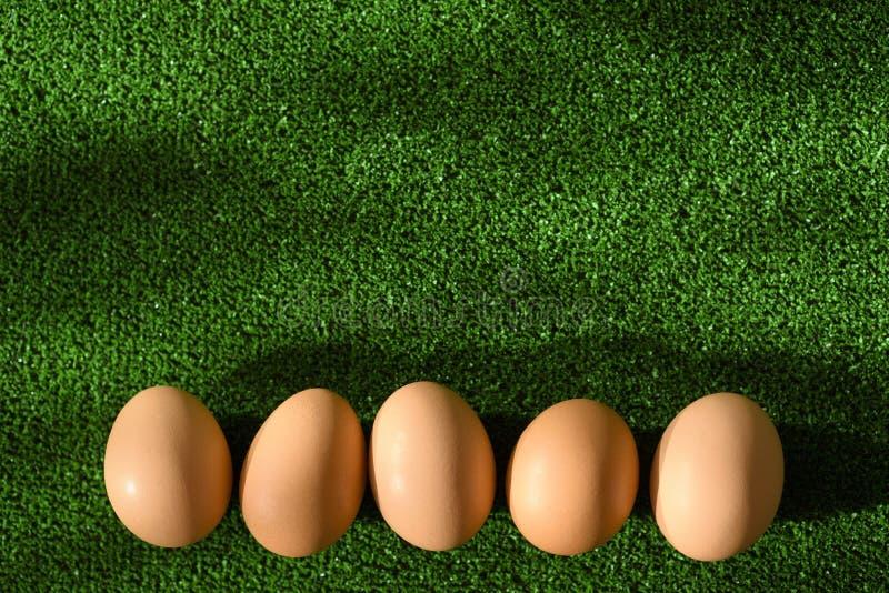 假日从鸡蛋的复活节装饰在一条线作为一个底下框架,说谎在草 免版税图库摄影