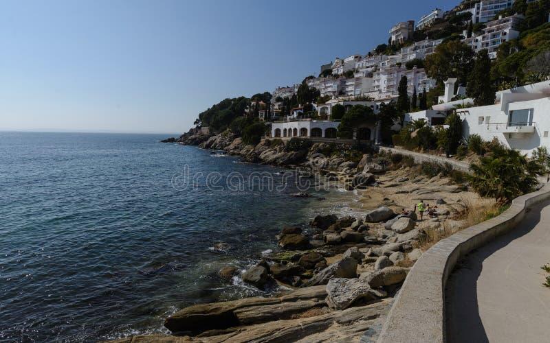 卡涅列斯Petites海滩,在肋前缘布拉瓦岛,西班牙的玫瑰 免版税图库摄影