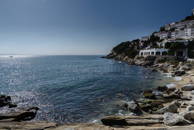 卡涅列斯Petites海滩,在肋前缘布拉瓦岛,西班牙的玫瑰 免版税库存照片