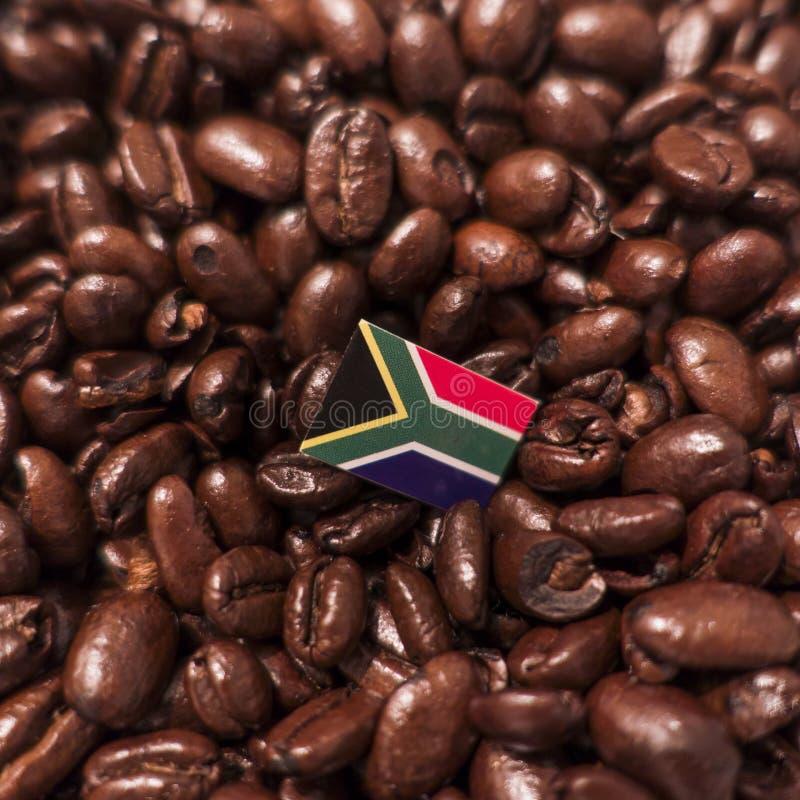 南非共和国旗子被安置在烤咖啡豆 免版税库存图片