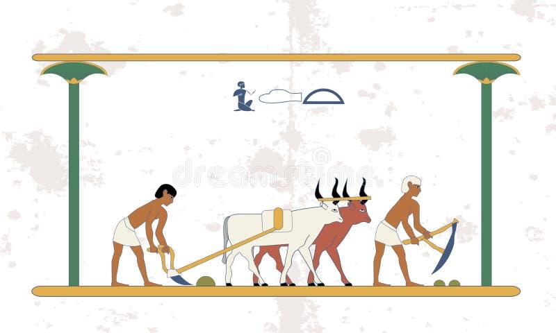 古埃及背景 有公牛队的农民犁领域 历史背景 古代人 皇族释放例证