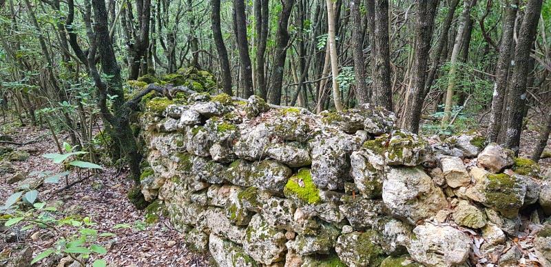 古老石块墙 库存照片