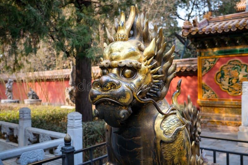 古铜色龙在紫禁城,北京中国 库存照片