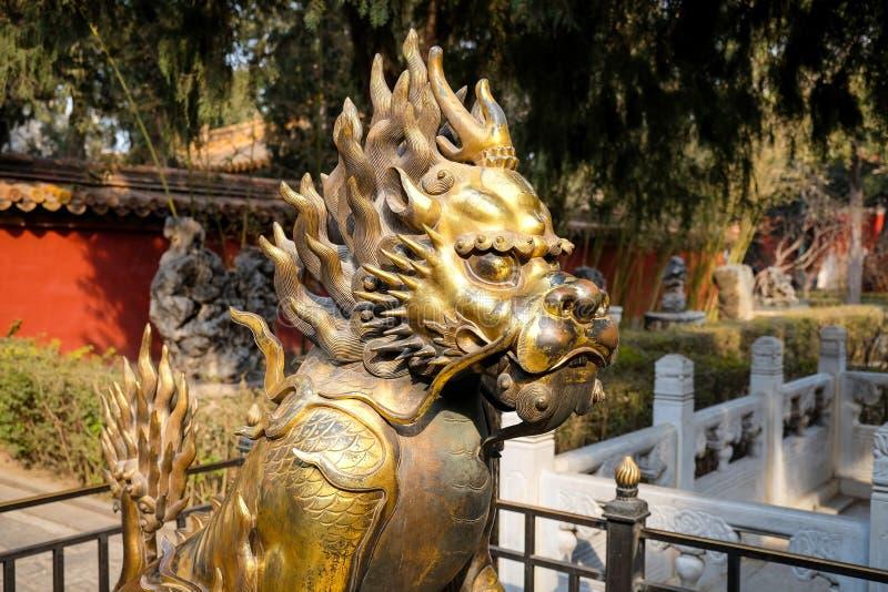 古铜色龙在紫禁城,北京中国 库存图片