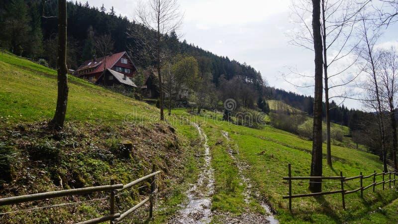 向乡间别墅的泥泞的路在黑森林里 图库摄影