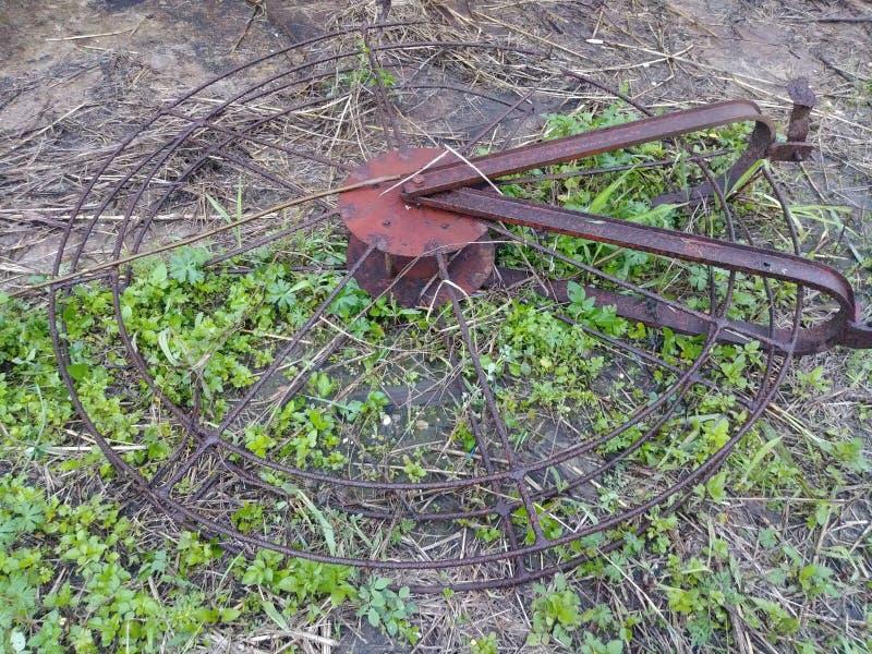 坐在绿草的生锈爱好者 免版税库存照片