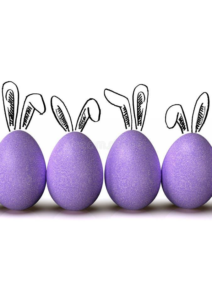 复活节彩蛋行,与兔宝宝耳朵,在白色背景 免版税图库摄影