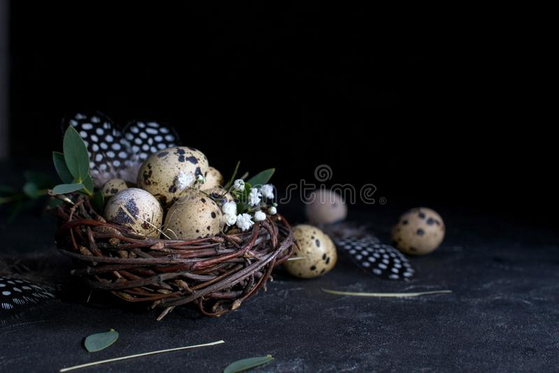 复活节概念-装饰杨柳巢用鹌鹑蛋,在黑暗的生锈的背景的羽毛 Copyspace 免版税库存照片