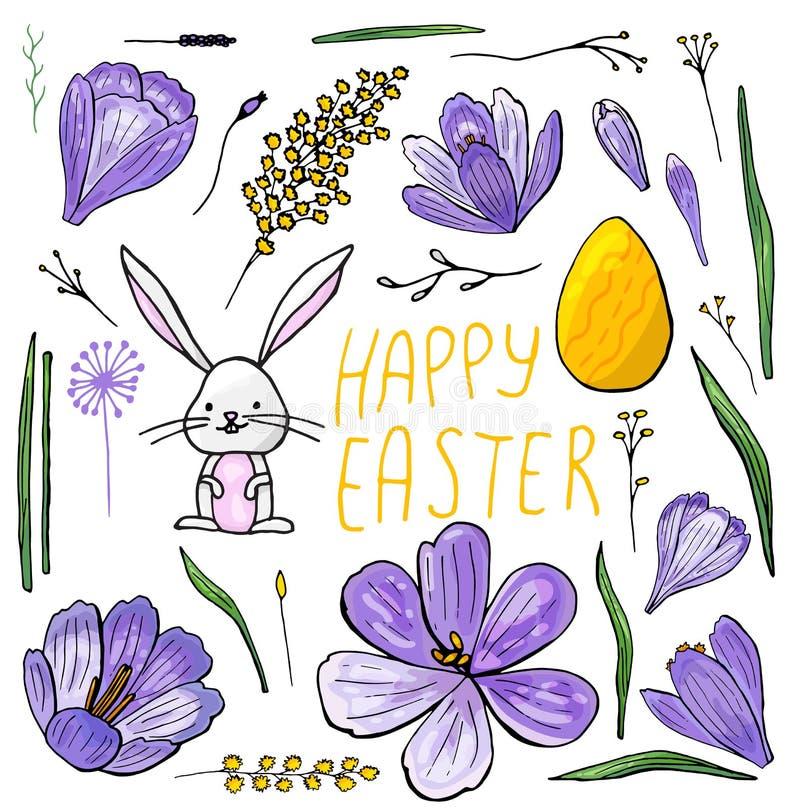 复活节设置了番红花、含羞草和兔宝宝的被隔绝的手拉的例证 皇族释放例证
