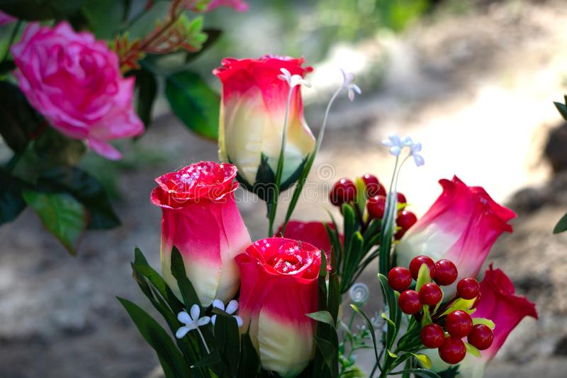 大红色虚假花五颜六色的植物群礼物瓣 图库摄影