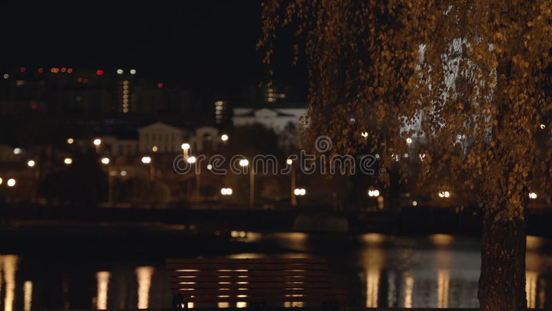 夜有灯笼和树的城市胡同在秋天 在秋天加拿大桦旁边的空的长凳立场在背景  库存照片