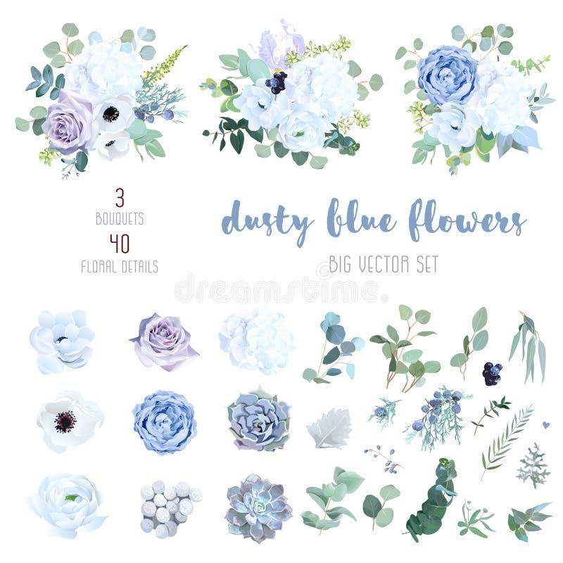多灰尘的蓝色,苍白紫色玫瑰,白色八仙花属,毛茛属 库存例证