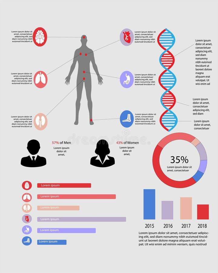 多种器官的医疗infographic包含的图 皇族释放例证