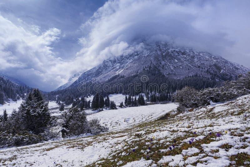 多雪的山好的自然风景视图  库存照片