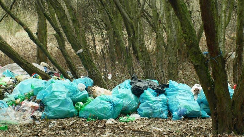 奥洛穆茨,捷克,2019年1月2日:在森林风景的垃圾在危险的自然,黑转储浪费人 库存照片