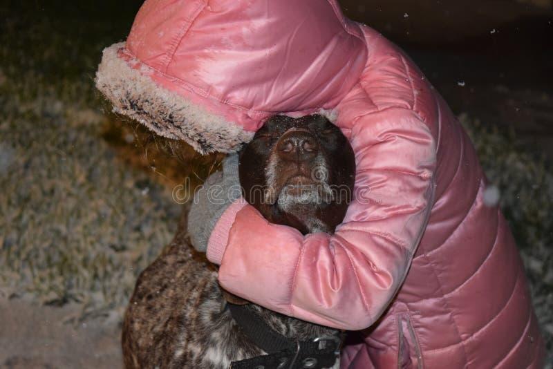 女孩使用与一条棕色德国短毛指针狗的,冬天雪 秀丽,哺乳动物 免版税库存图片