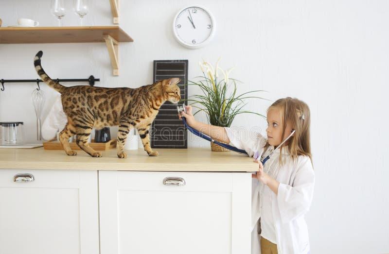 女孩使用兽医与她的在厨房的小猫 库存图片