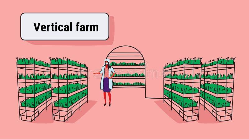 女孩农业工程师照料植物聪明的农厂系统概念现代垂直的有机农厂内部 库存例证