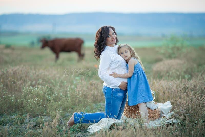 女儿愉快的妈妈 野餐在绿色公园 免版税库存照片