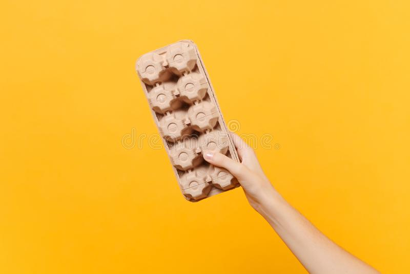 女性举行在手中棕色清楚的空的空白的工艺纸板容器的关闭存放的运输的鸡鸡蛋 免版税库存图片