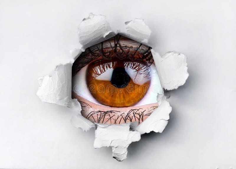 妇女看通过在被剥去的纸的孔的褐色眼睛 库存图片