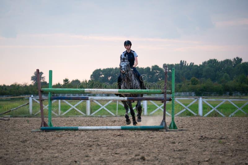妇女骑师的超级慢动作跳过在马的障碍 图库摄影