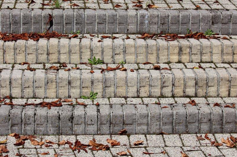 室外石步背景纹理用下落部分地盖的由多块狭窄的装饰石头做成烘干和绿色 免版税库存图片