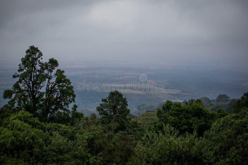 对Ngorongoro国立公园的美丽如画的看法 库存照片