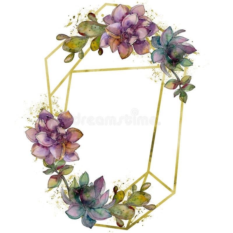 密林植物的多汁花 水彩背景例证集合 框架边界水晶装饰品正方形 向量例证