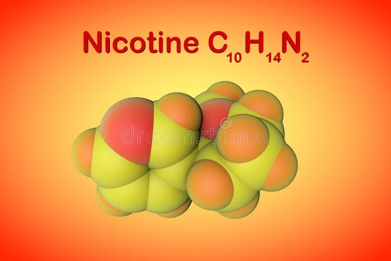 尼古丁分子结构  这是在烟草的一植物生物碱存在 原子代表作为球形用颜色 向量例证