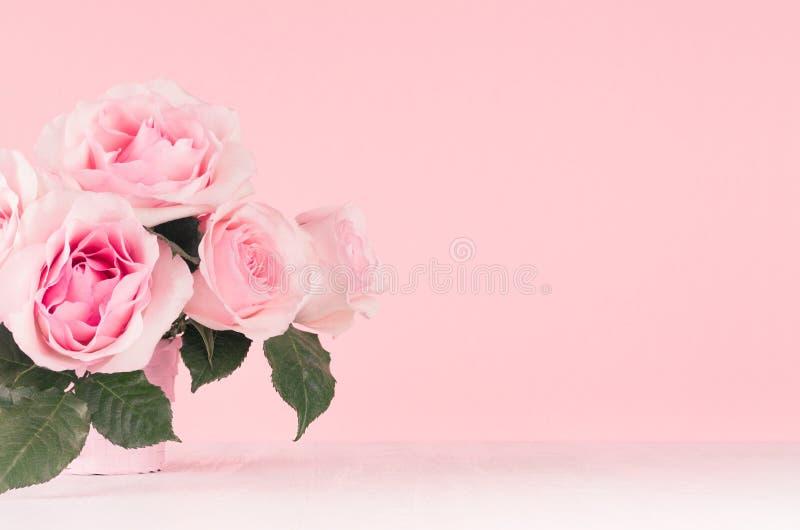 少女柔和的花背景-在白色木板,拷贝空间的精妙的桃红色玫瑰 免版税图库摄影
