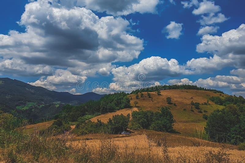 山与云彩和天空蔚蓝的草甸风景 免版税库存照片