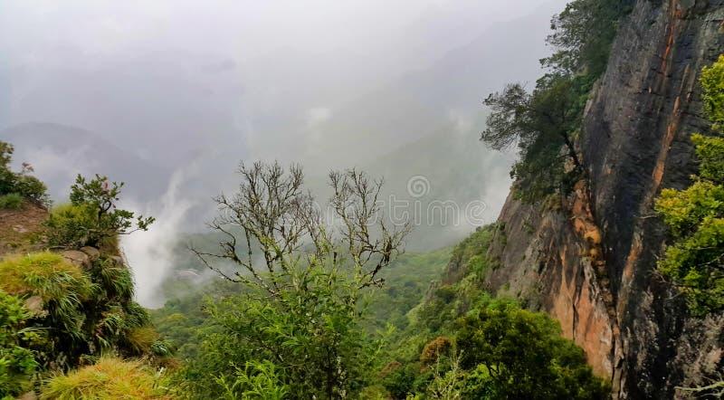 山吻合风景有薄雾的谷  免版税库存图片