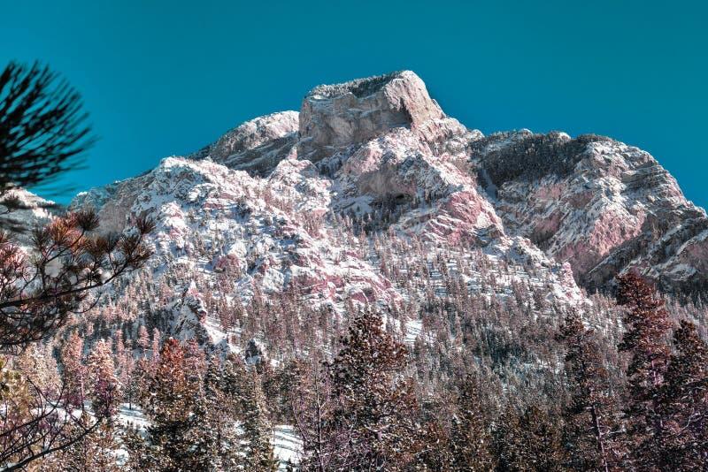 山在反对天空蔚蓝的冬天,风景在美国 图库摄影