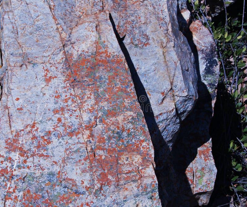 岩石的有斑点的表面 免版税库存图片