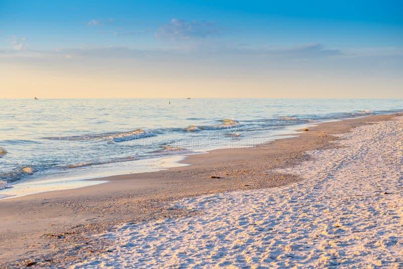 岸的俯视的看法在安娜玛丽亚海岛,佛罗里达 库存图片