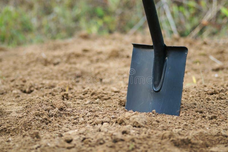 工作在有锹的庭院里 地面的准备播种和种植的 开掘老草坪 免版税库存照片