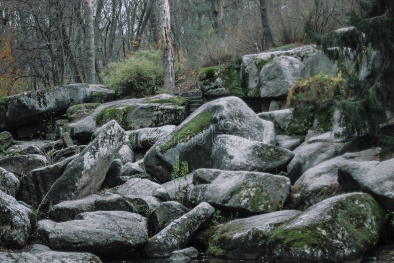 巨大的古老石头在森林国立公园Sofiivka,乌曼,乌克兰 图库摄影