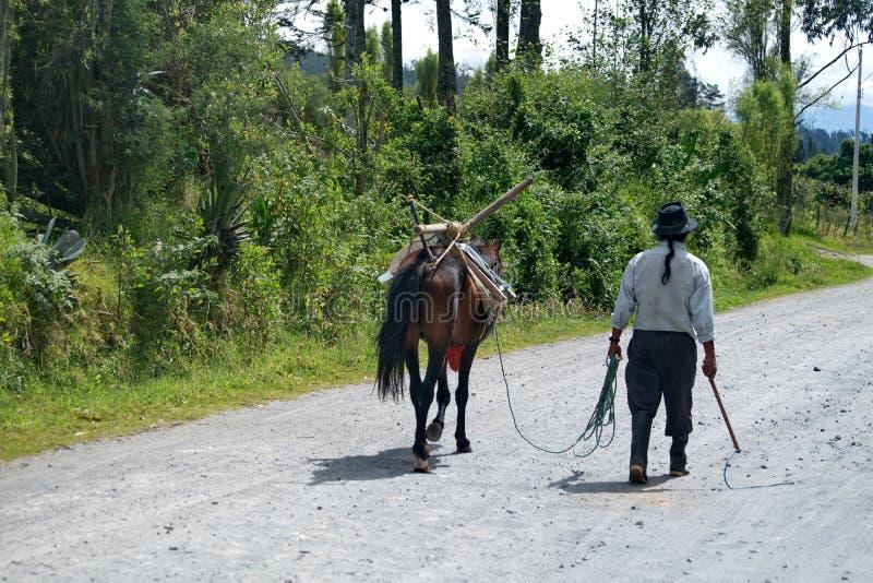 带领马的土产农夫 免版税图库摄影