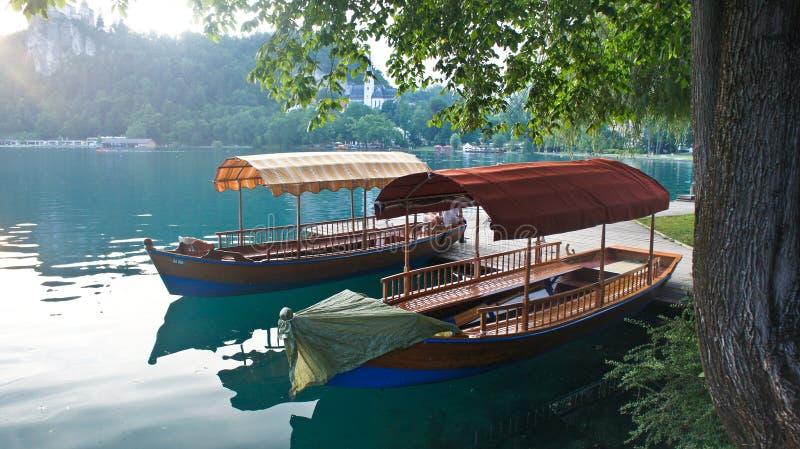 布莱德湖、朱利安阿尔卑斯山和小船,日落,流血,斯洛文尼亚美丽的景色  库存图片