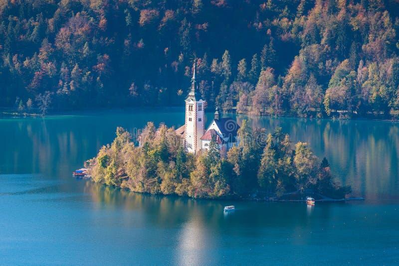 布莱德湖的美丽的海岛在斯洛文尼亚 免版税库存图片