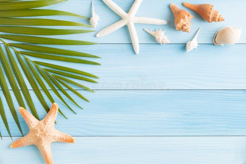 平的被放置的照片saeshell和海星在蓝色木桌、顶视图和拷贝空间上蒙太奇的您的产品,夏天概念 库存图片