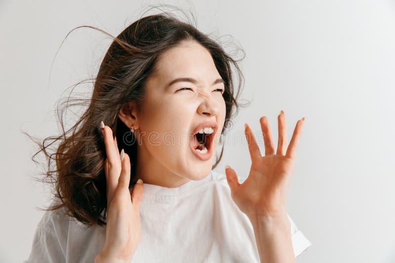 年轻情感恼怒的妇女尖叫在灰色演播室背景 库存图片